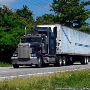 Transportadora para o nordeste